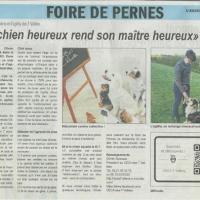 Article abeille ternoise 10 05 2016 foire agricole pernes 1